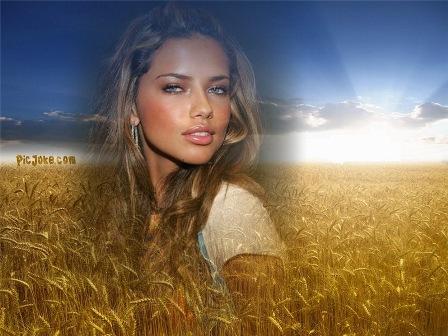 ... sembrado de trigo, este fotomontaje lo podemos encontrar en picjoke