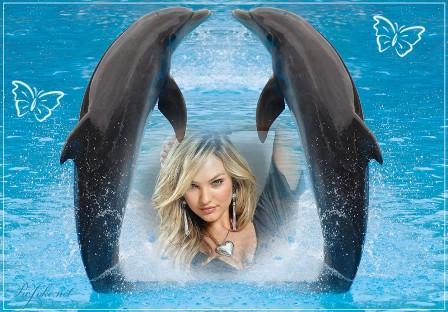 ... que nos ofrece picjoke.net, especial para los amantes de los delfines