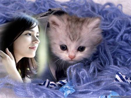 Fotomontajes con animales tiernos - Imagui