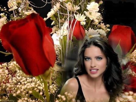 Preciosos fotomontajes con rosas de color rojo