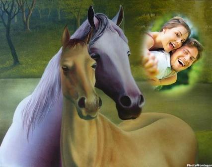 fotomontajes gratis con caballos
