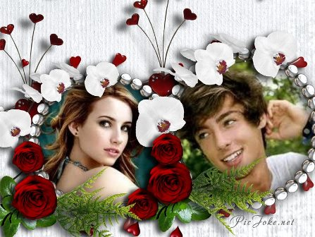 Fotomontajes con helechos y rosas