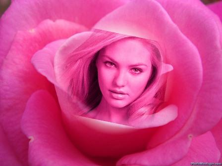 Fotomontajes en una rosa