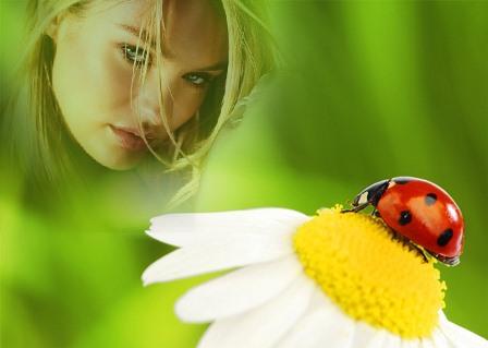 Fotomontajes en una flor