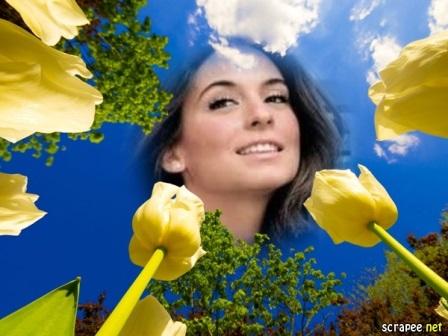Fotomontajes con rosas amarillas