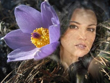 Fotomontajes con una bella flor lila