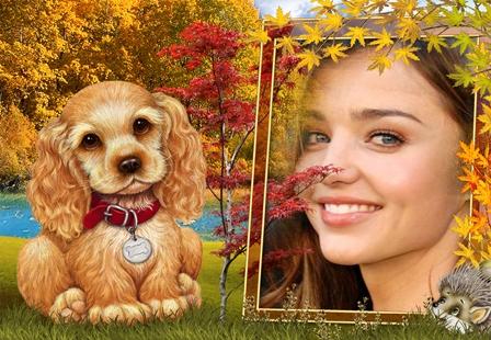 Fotomontajes con mascotas